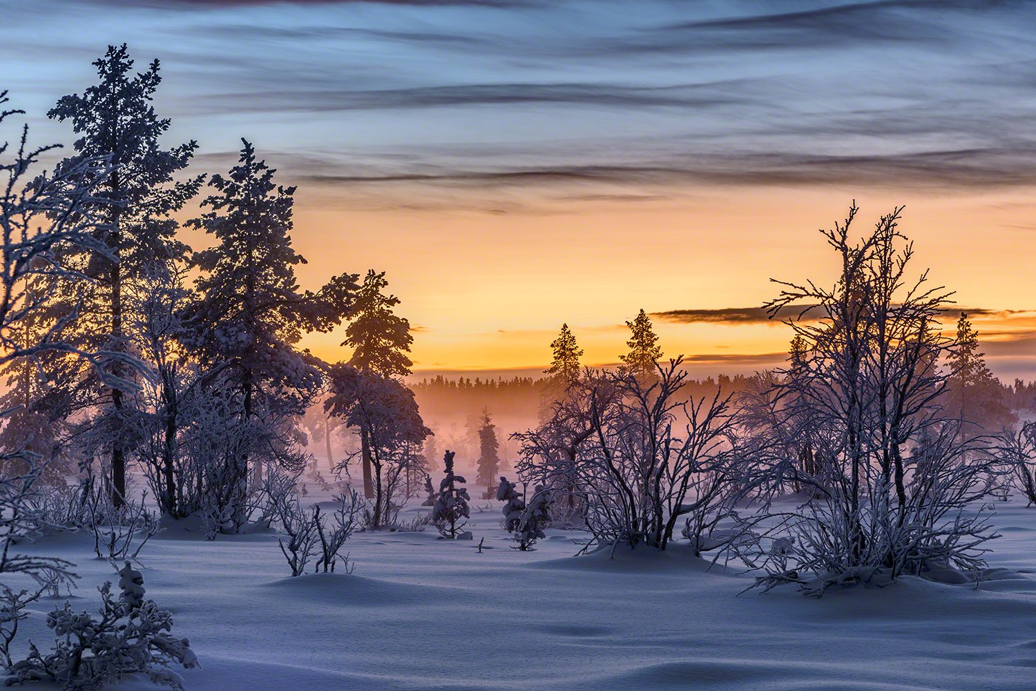 Winter photography during the polar night in Lapland, Finland.