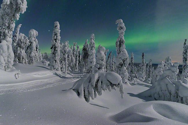 Winter wonderland scene with a bit of aurora