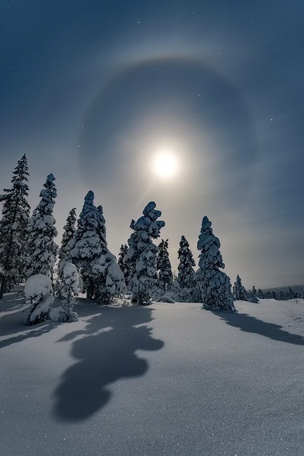 Winter moon halo