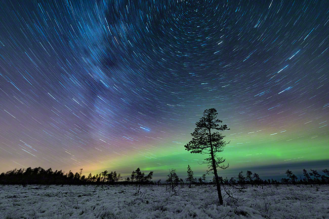 Star trail auroras