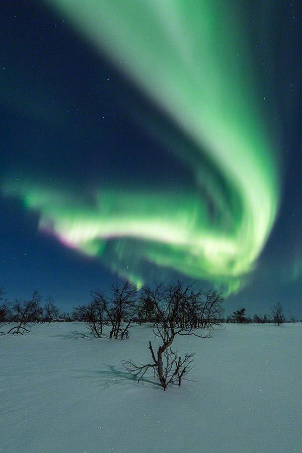Aurora swirl above snow in Lapland Finland