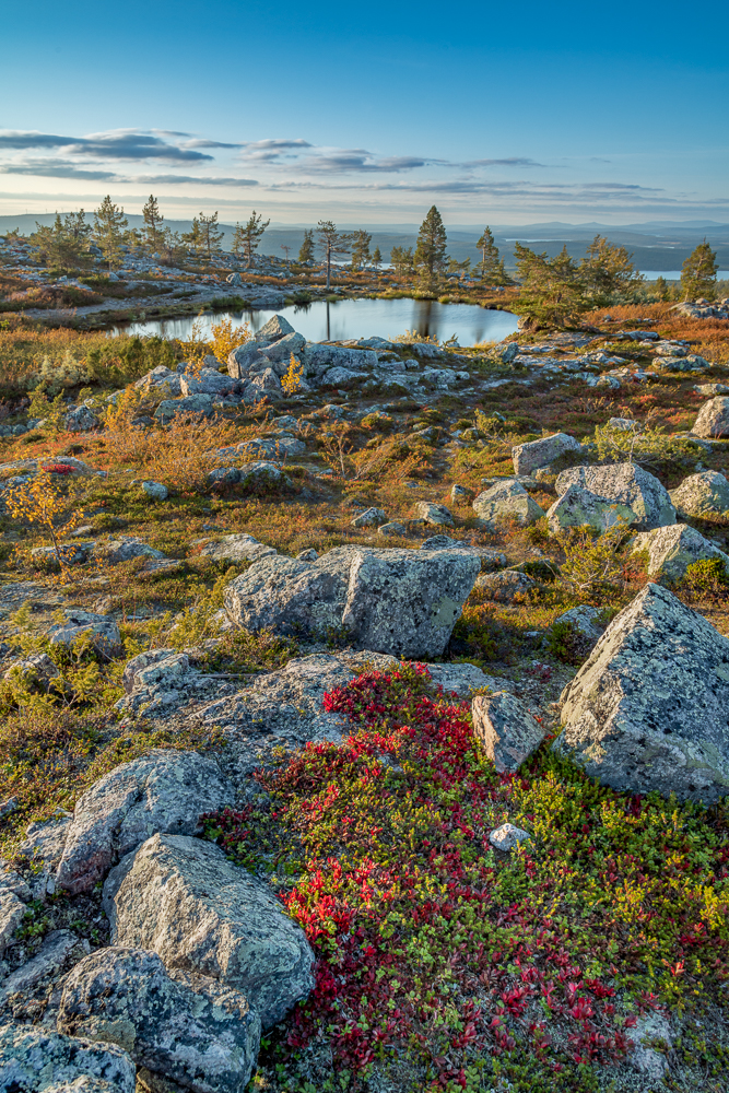colors of lapland autumn landscape