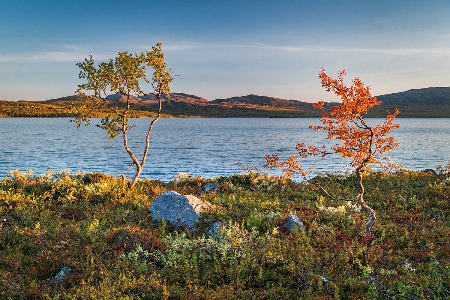 colors of lapland autumn vibes
