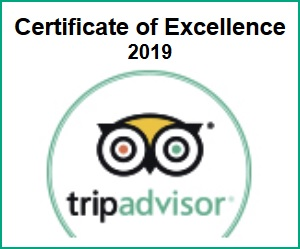Tripadvisor Certificate of Excellence 2019 _ ENG